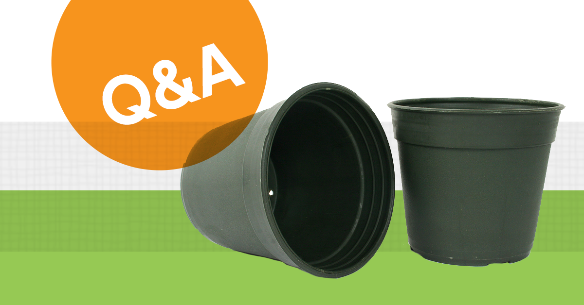 Can I Recycle Plastic Plant Pots