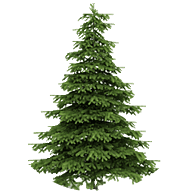 Christmas_tree_seasonal